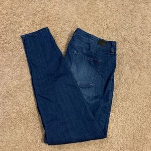 Medium Washed Jeggings